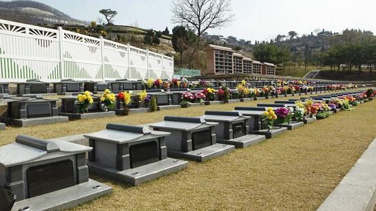 삼성공원묘지.jpg