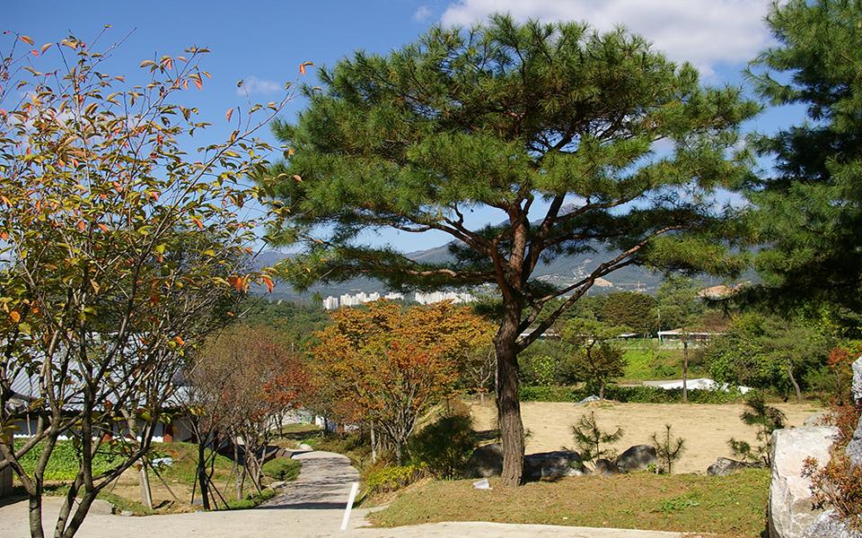 양평수목장.jpg