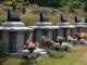 공원묘원일산 #4