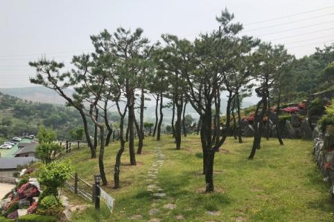 분당수목장 by 하늘나무