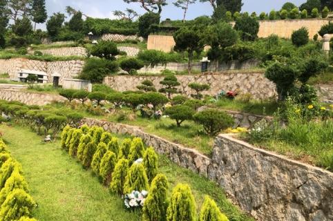 공원묘지 수목장 by 하늘나무