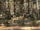 김포수목장 #3