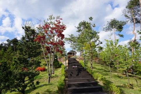 수목장,자연장 by 하늘나무