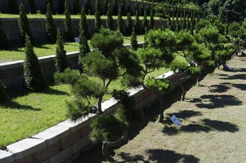 양수리수목장 by 하늘나무