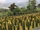 김포수목장 #2