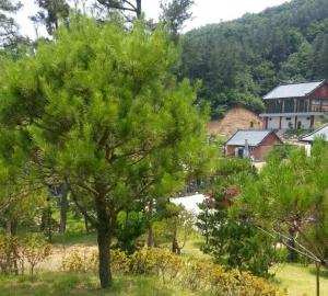 정안수목장 by 하늘나무