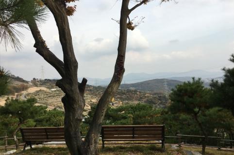 수목장 자연장 by 하늘나무