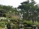수목장지,자연장지 #2