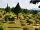포천묘지 #5