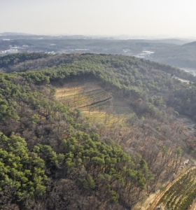 일산수목장 by 하늘나무
