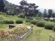 공원묘지 매장묘 #3