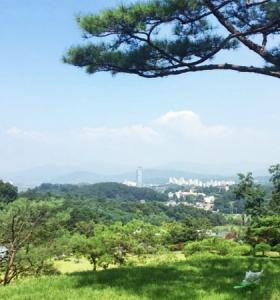 양평수목장 by 하늘나무