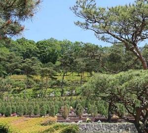 용인수목장 by 하늘나무