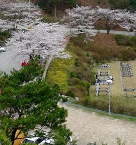 동두천납골묘 by 하늘나무