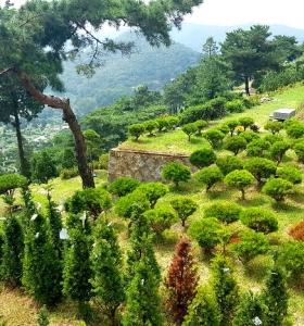 벽제장흥수목장 by 하늘나무