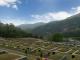 묘지,매장묘,가족묘 #2